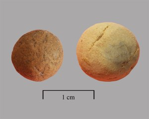 Middle Village clay ball artifacts (Wilson et al 2009:277)